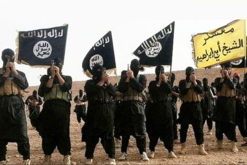 ¿A dónde se han ido los combatientes de Daesh?