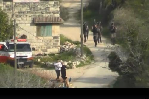 Fuerzas israelíes disparan una granada de aturdimiento contra una pareja…