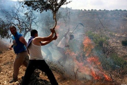 """ANP: Los tribunales de Israel ofrecen """"cobertura legal"""" a la…"""