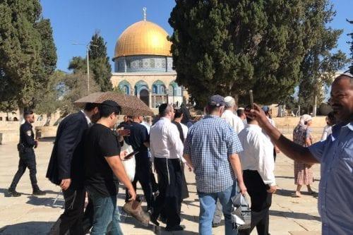 Informe: 1.944 colonos israelíes asaltaron la mezquita de Al-Aqsa en…